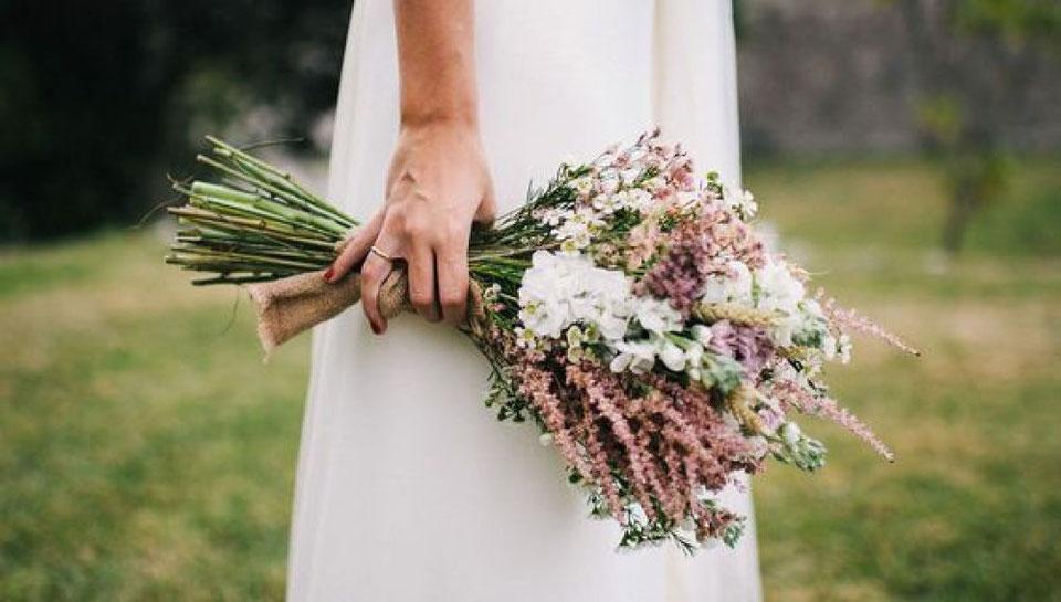 Astilbe Hochzeit